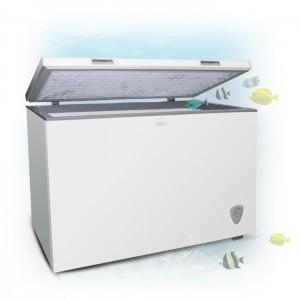 walton Freezer FC-3J0 300L Deep